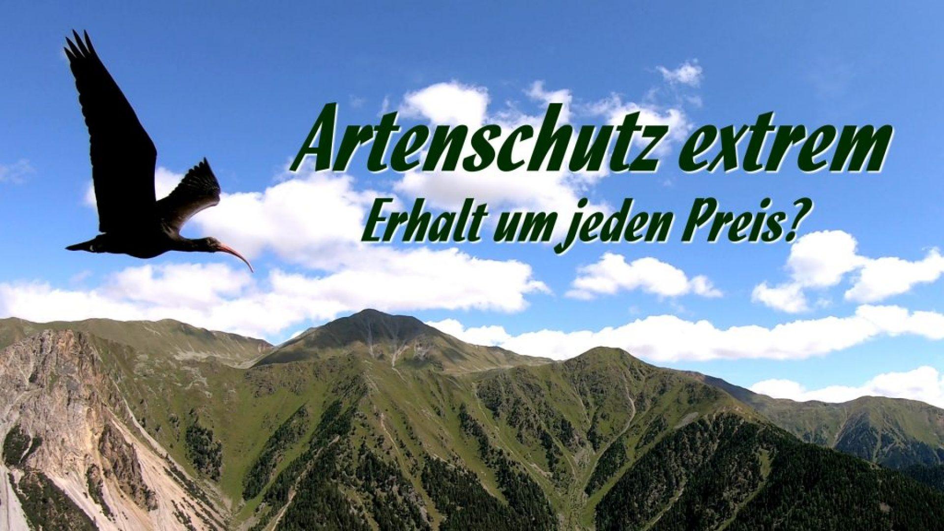 Wildlife conservation extreme